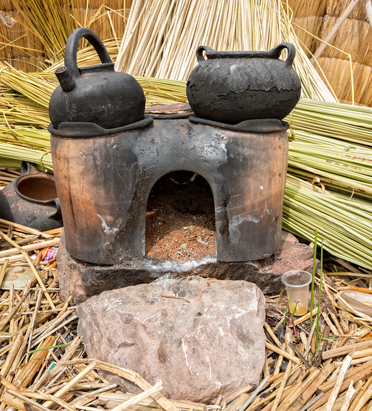 Outdoor Cookstove Fueled by Reeds