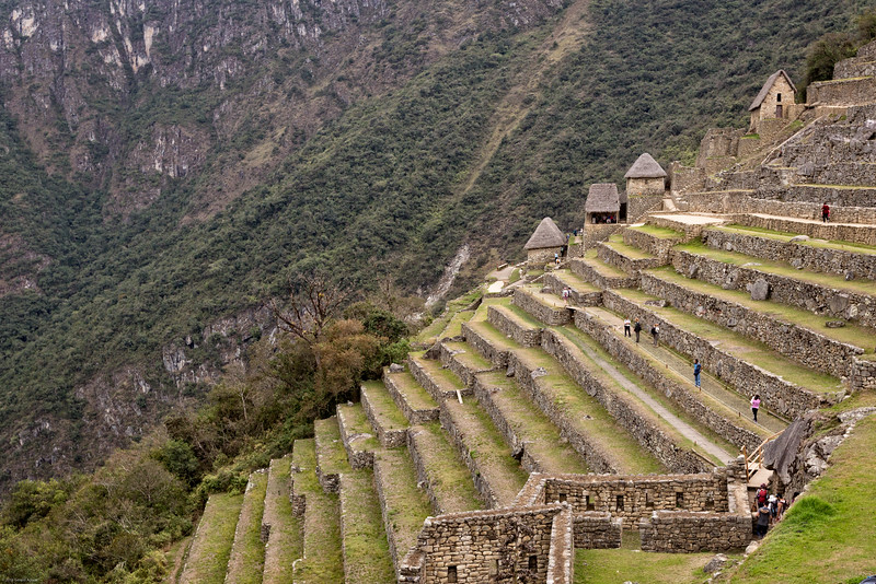 Agricultural Terrace at Machu Picchu