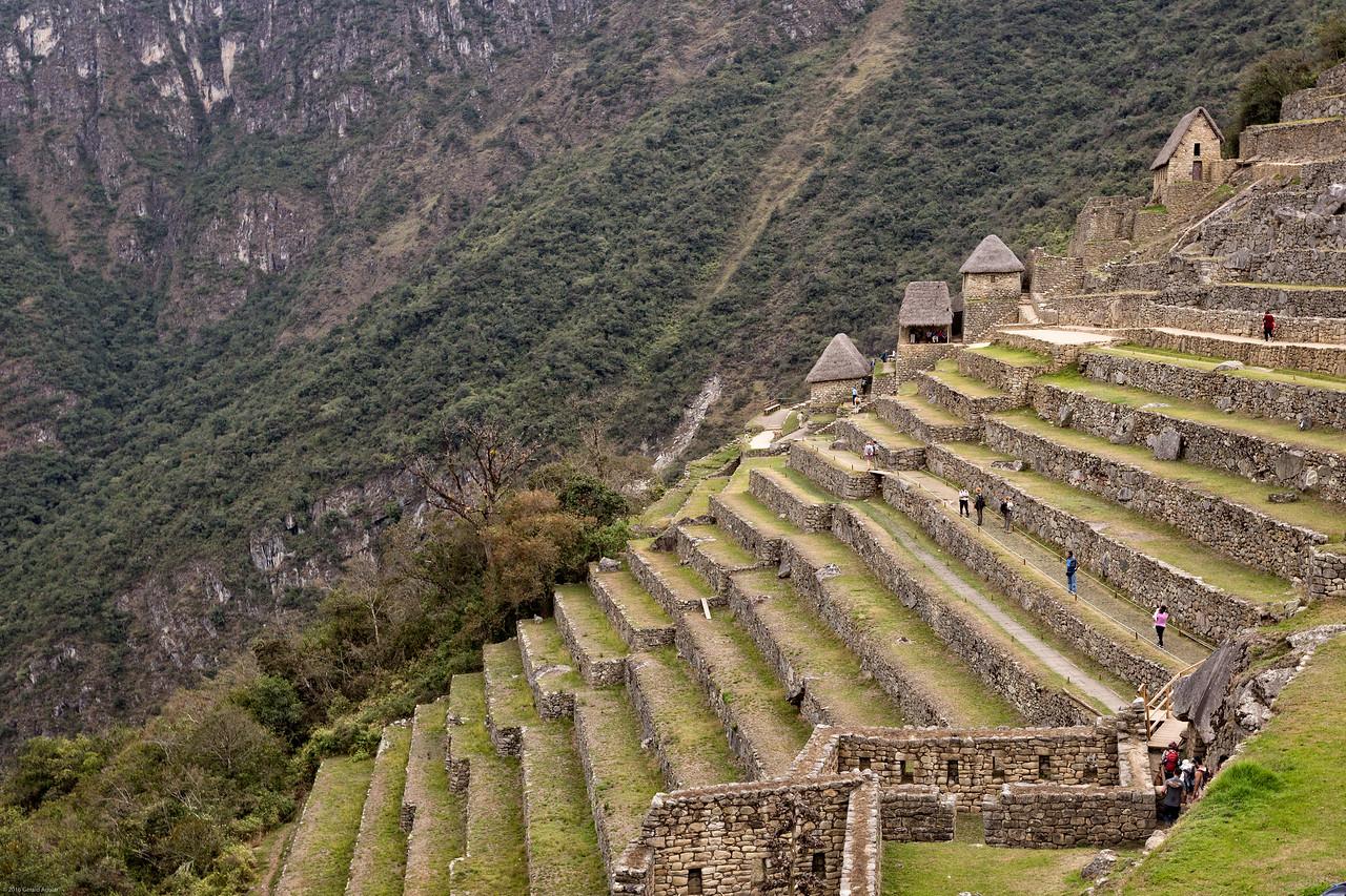 Agricultural Terrace at Machu Picchu