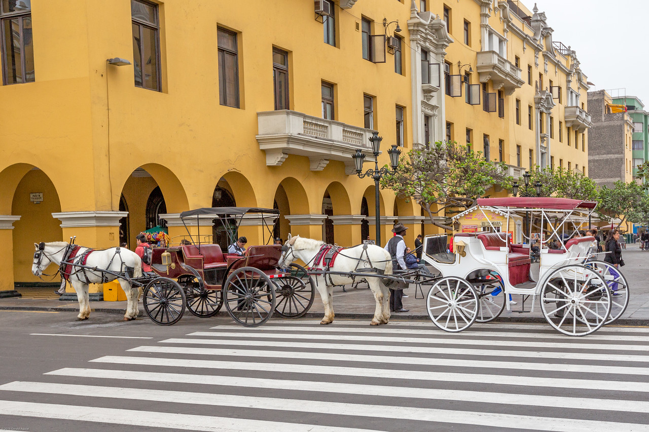 Horse Carriages in Plaza Mayor in Lima