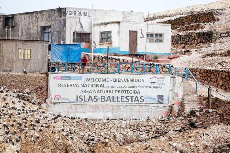 Caretaker of Ballestas Islands