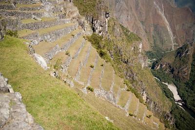 Machu Picchu, Peru - Agricultural Terraces Below Guard House (2) (2008-07-05)