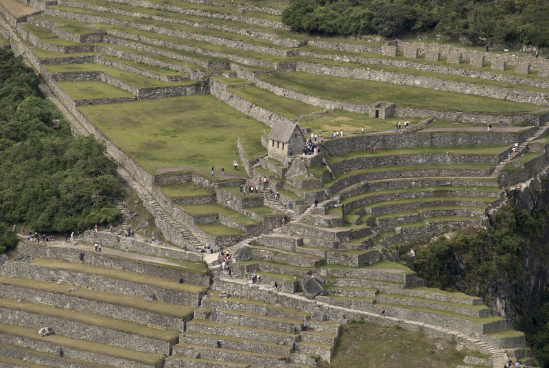 Machu Picchu, the agricultural sector, from Huayna Picchu.
