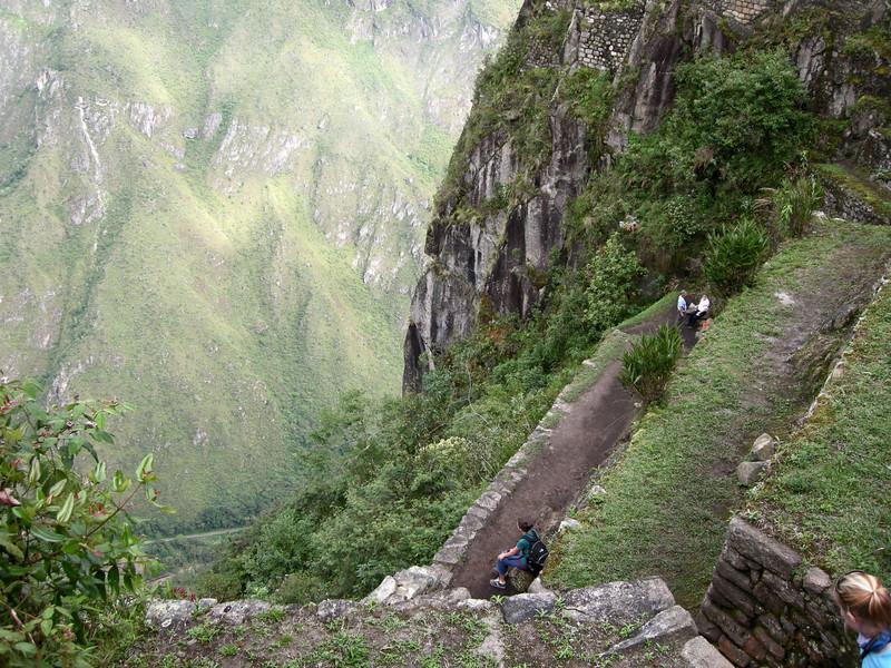 Machu Picchu, steep agricultural steps high on Huayna Picchu.