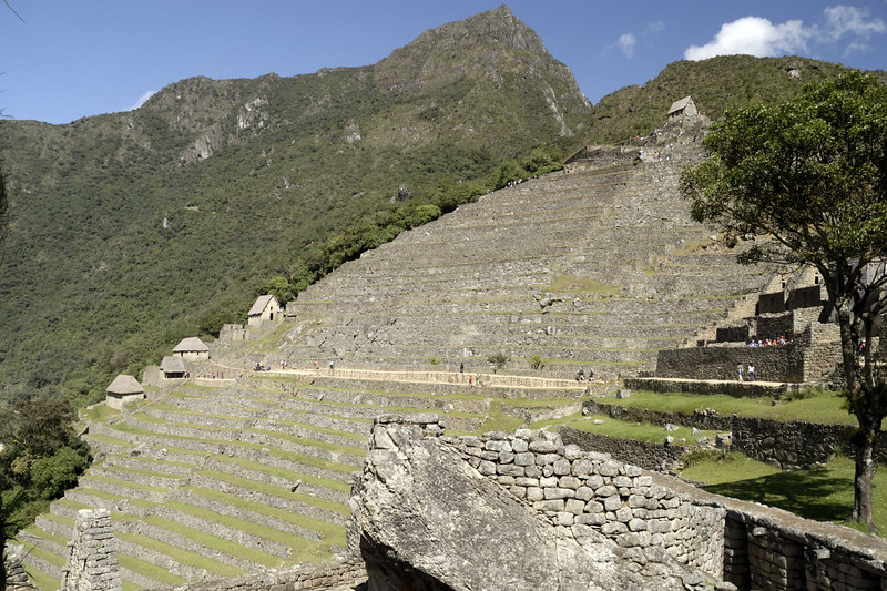 Machu Picchu, the agricultural sector.