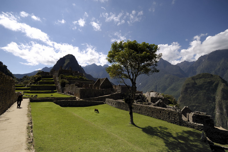Machu Picchu, looking across the Plaza at Huayna Picchu.