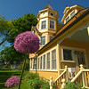 Allium flowers rises up in front an old Victorian Home on Main Street.