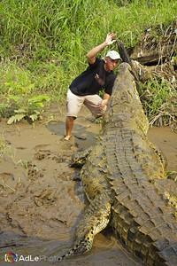 Jose's Crocodile Tour