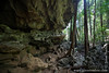 Tsingy Cave and Forest