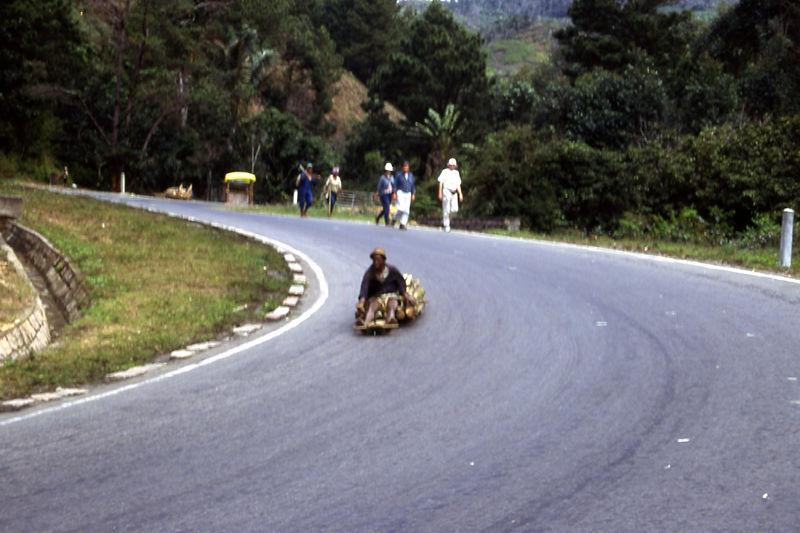Transporting wood down hill, Madagascar.