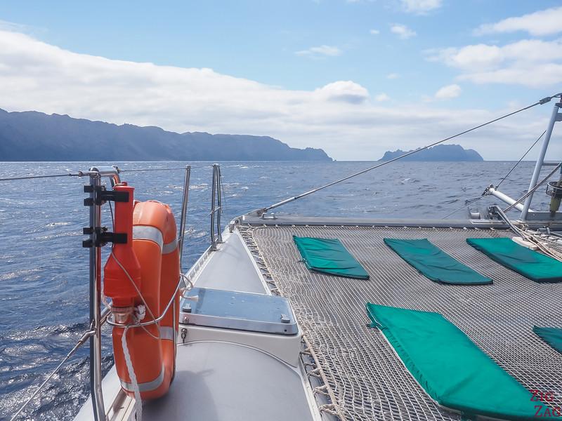 Desertas islands boat tour Madeira