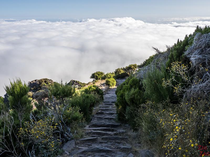 Verada do Pico Ruivo 4
