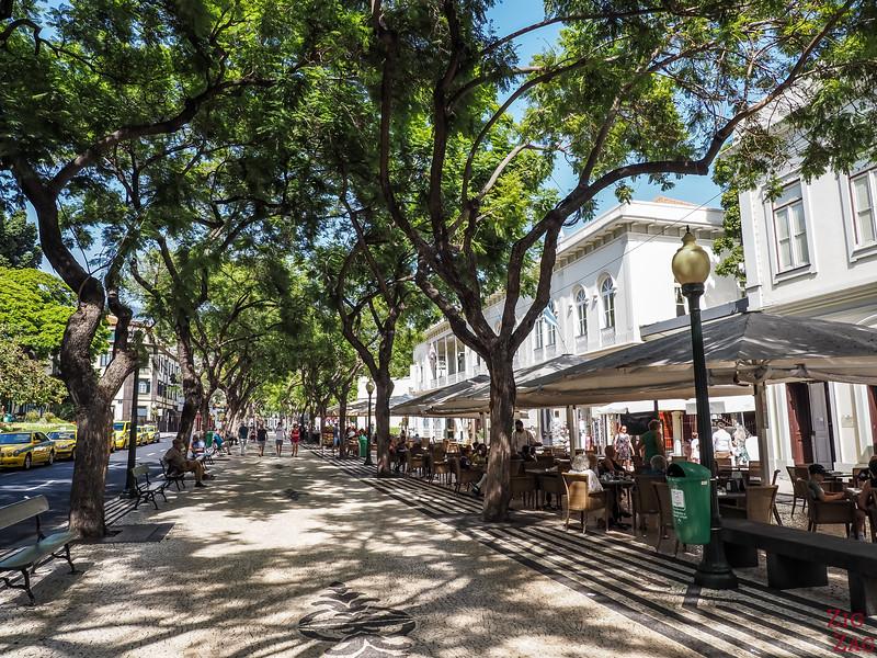 Charming street of Funchal