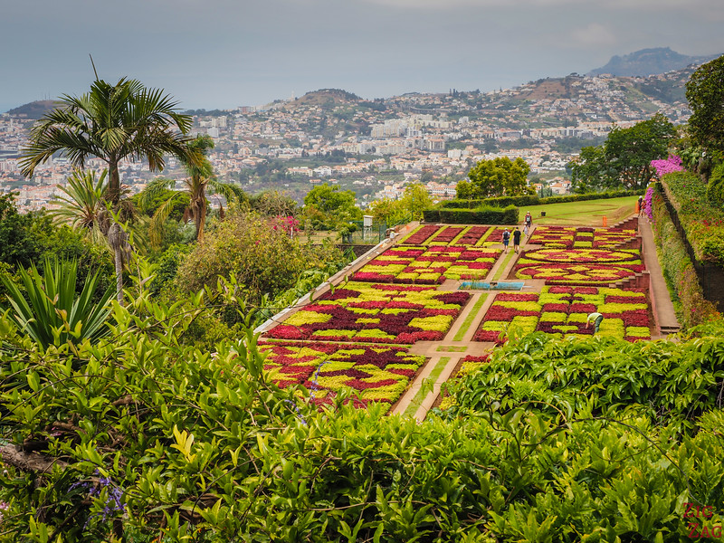 Aussichtspunkt Botanischer Garten