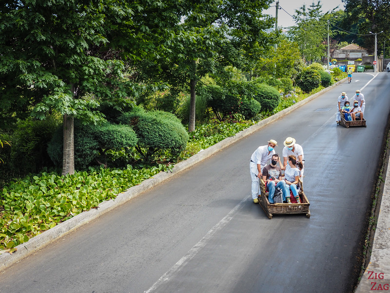 Funchal sled ride picture