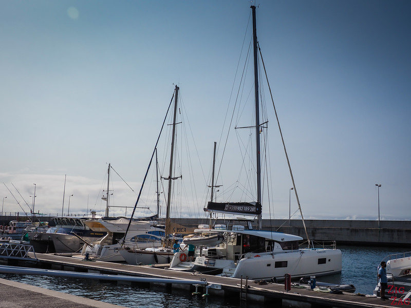 Catamarans in Funchal Marina