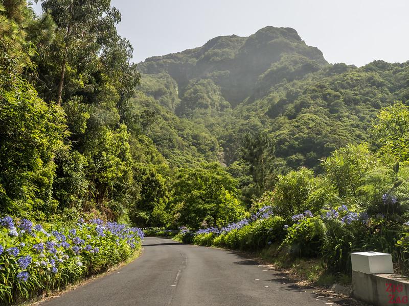 Auffahrt in Madeira