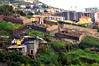 DSC_0859, cranes, terrace, farm, madeira, Lido