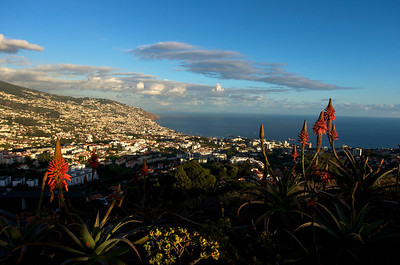 Funchal from Pico dos Barcelos, at sunset.