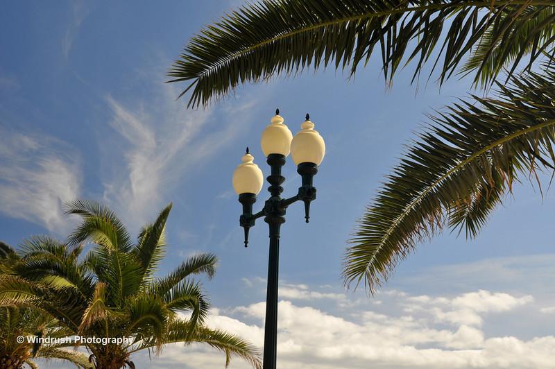 069 Promenade, Funchal