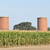 I believe these old brick silos are a local historical landmark.