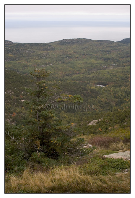 View from Cadillac Mountain<br /> Mount Desert Island, Maine