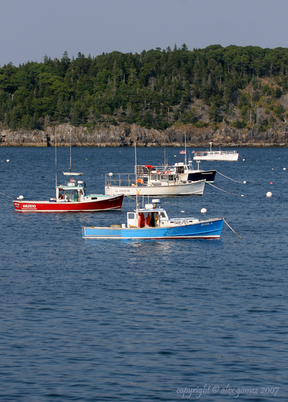 Maine 2007