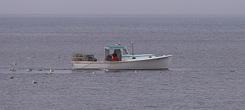 Lobster Boat.  This was taken looking from the deck of the cabin where we stayed