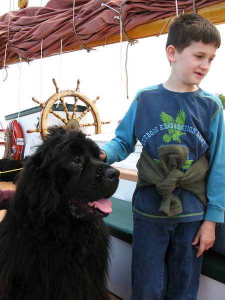 Sam and one of the Newfoundlands