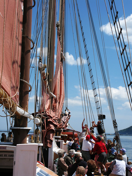 The crew invited anyone who wished to help hoist the sails.  This the foresail and mainsail going up.