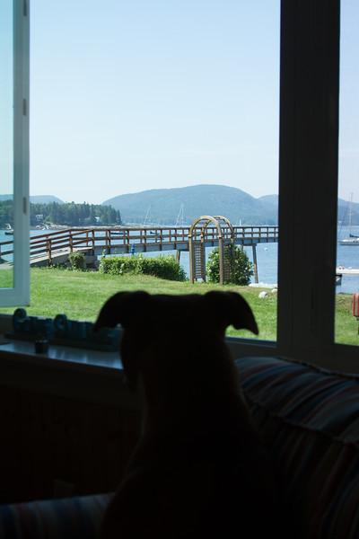 Maine_070313_044
