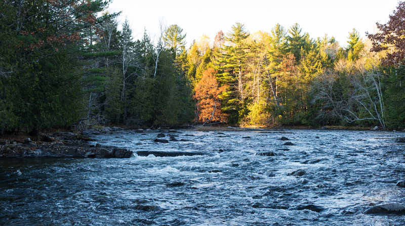 River leading to Big Lake, Grand Lake Stream, ME - November 2016