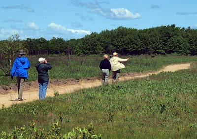 Maine Audubon Trip - May 2011