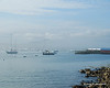 Lots of lobster boats in Bass Harbor