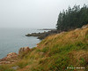 On our first day, we did some exploring of the island.  This is the shore at Burnt Coat Harbor Lighthouse