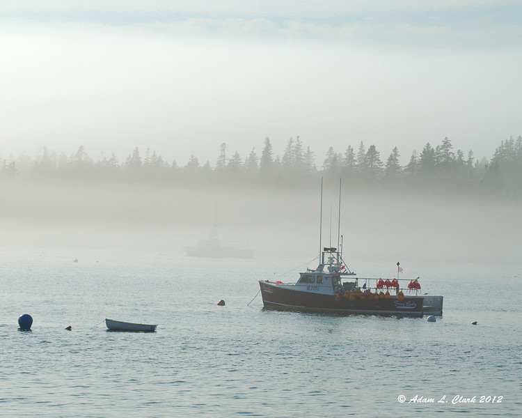 Even though it was late afternoon, it was still quite foggy on the water