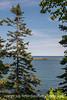 Arcadia National Park, Maine