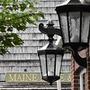 Maine Made & lamps