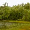 Maine-9053
