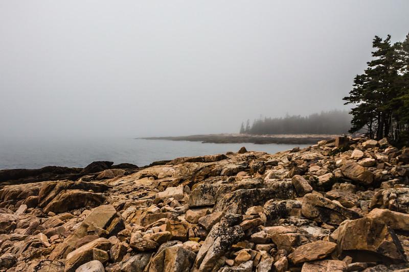 Maine-8898