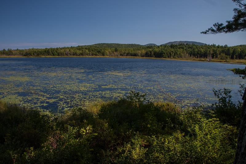 Maine-8843