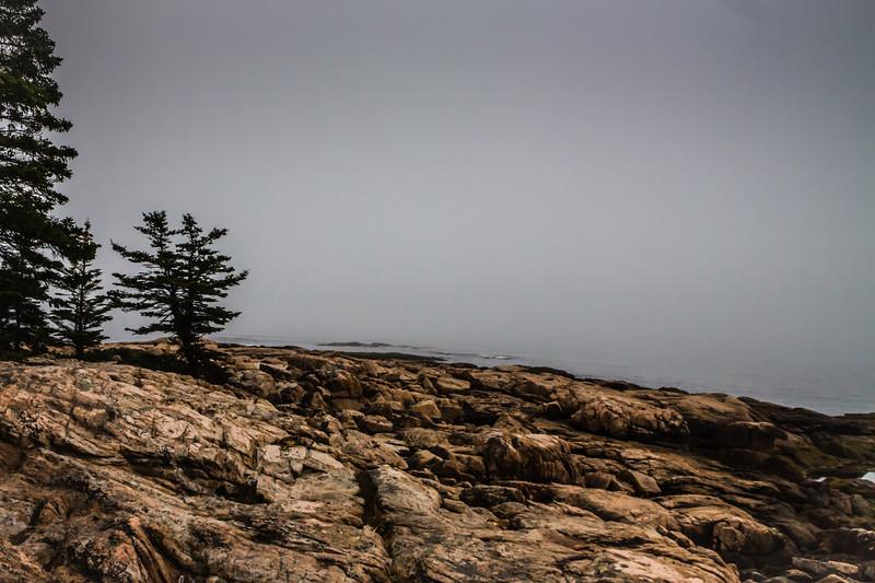 Maine-8897