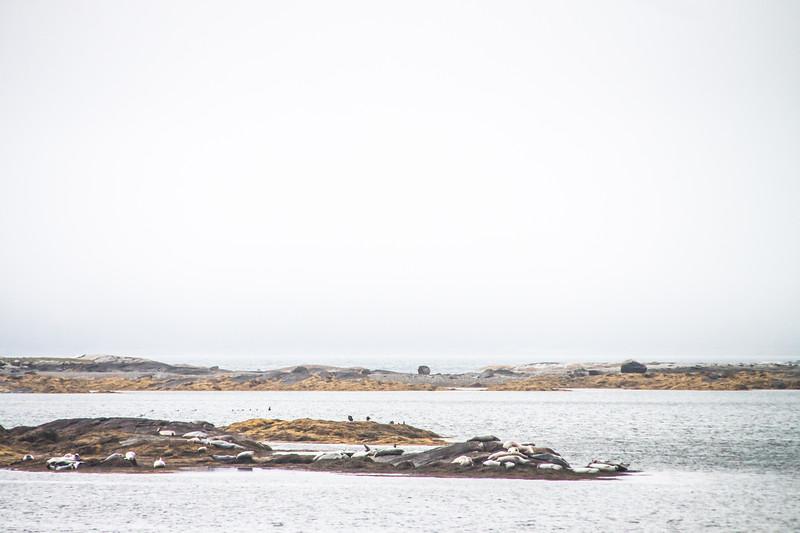 Maine-9192