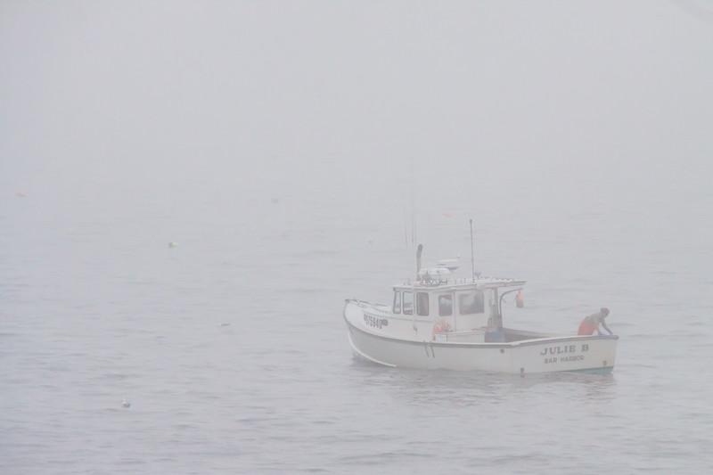 Maine-8945