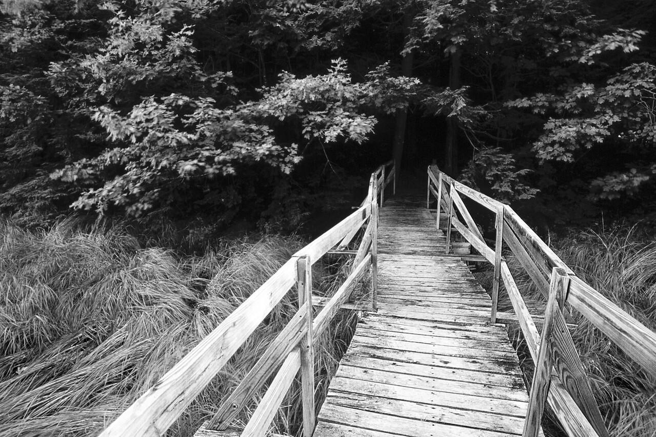 aaaMaineB&W field c bridge Untitled-11 edit