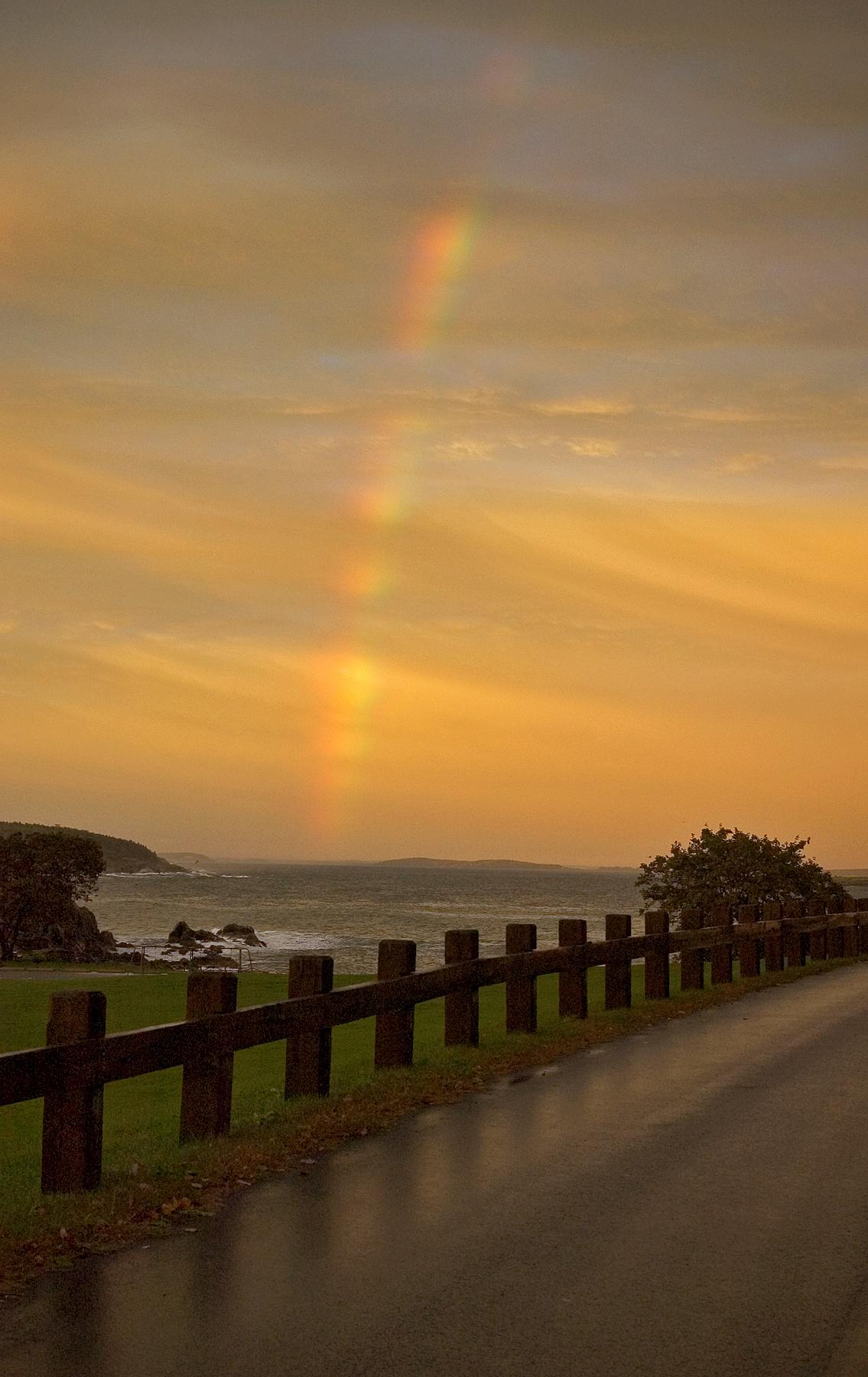 Chasing rainbows street reflection_3149