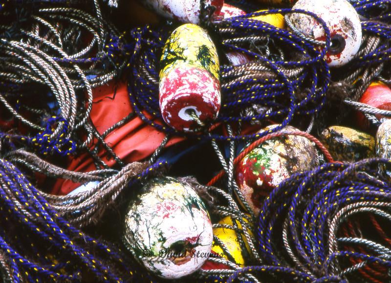 Buoys and ropes