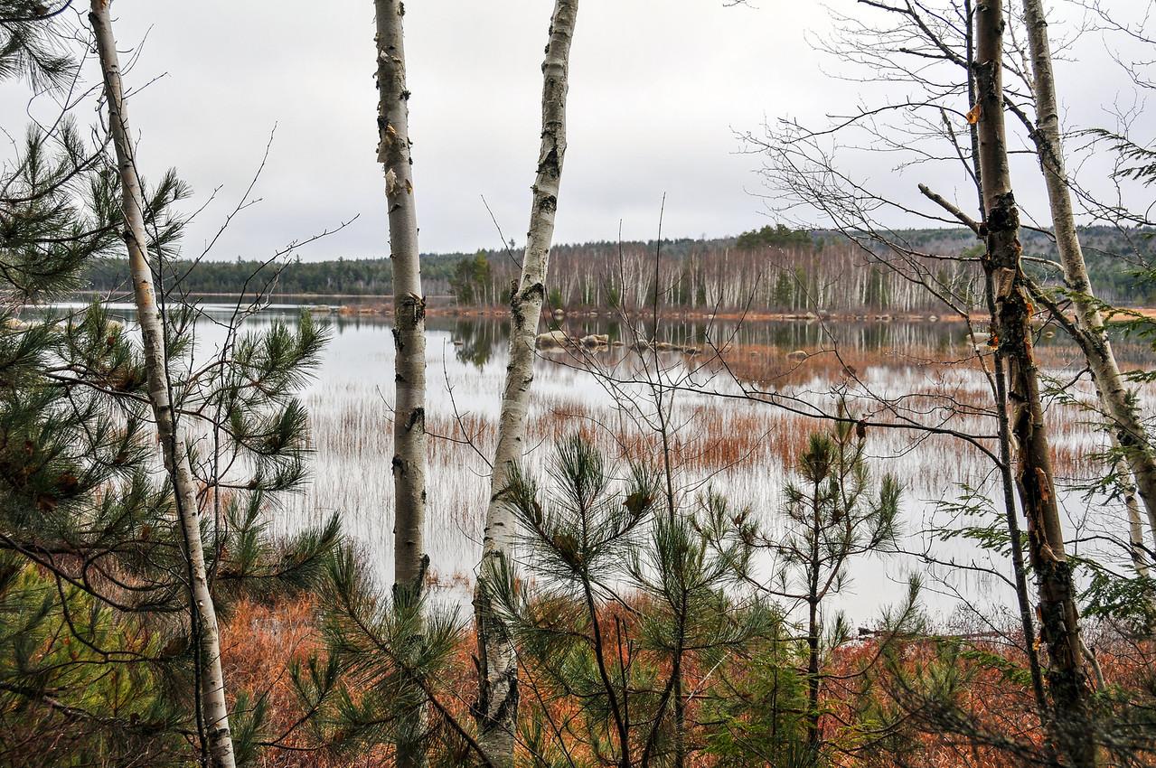 Grand Lake Stream area - November 2009