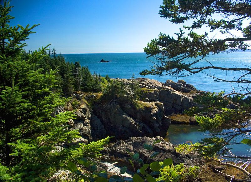 Point Quoddy Coast, Maine
