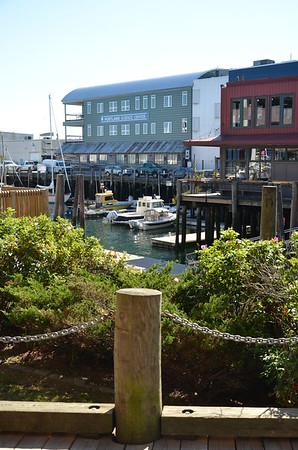 Buildings & Boats lining the Casco Bay Harbor, Science Center